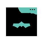 icon services laura 2