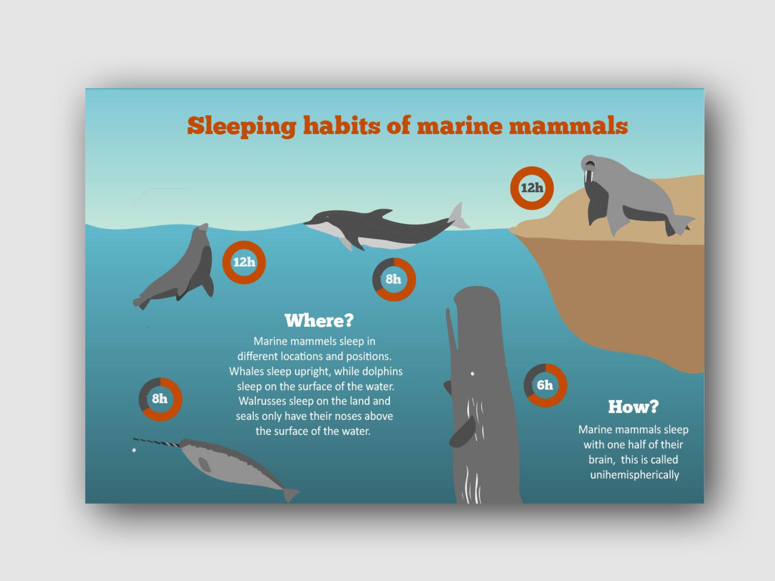 infographics15