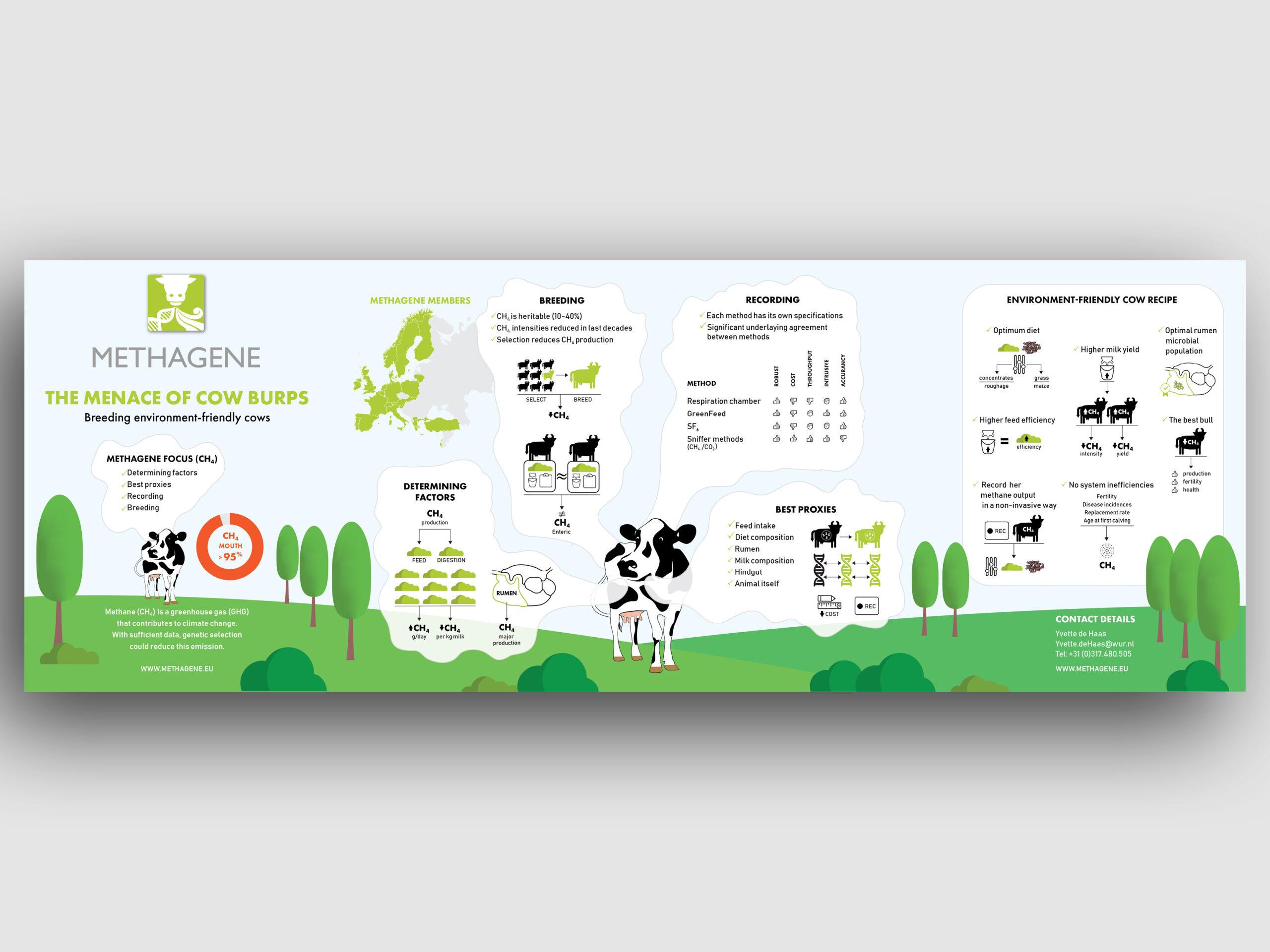 infographics4