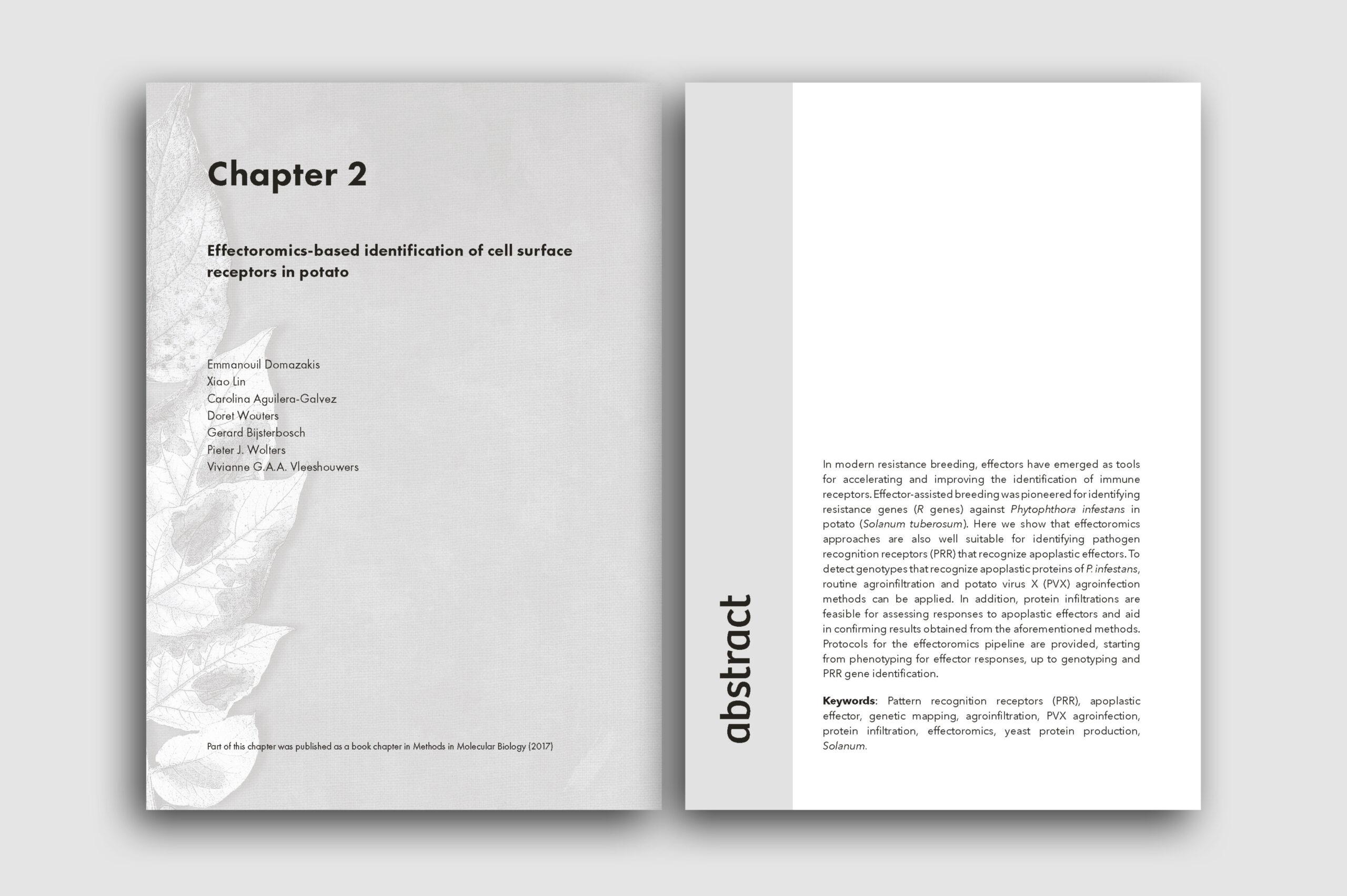 layout23
