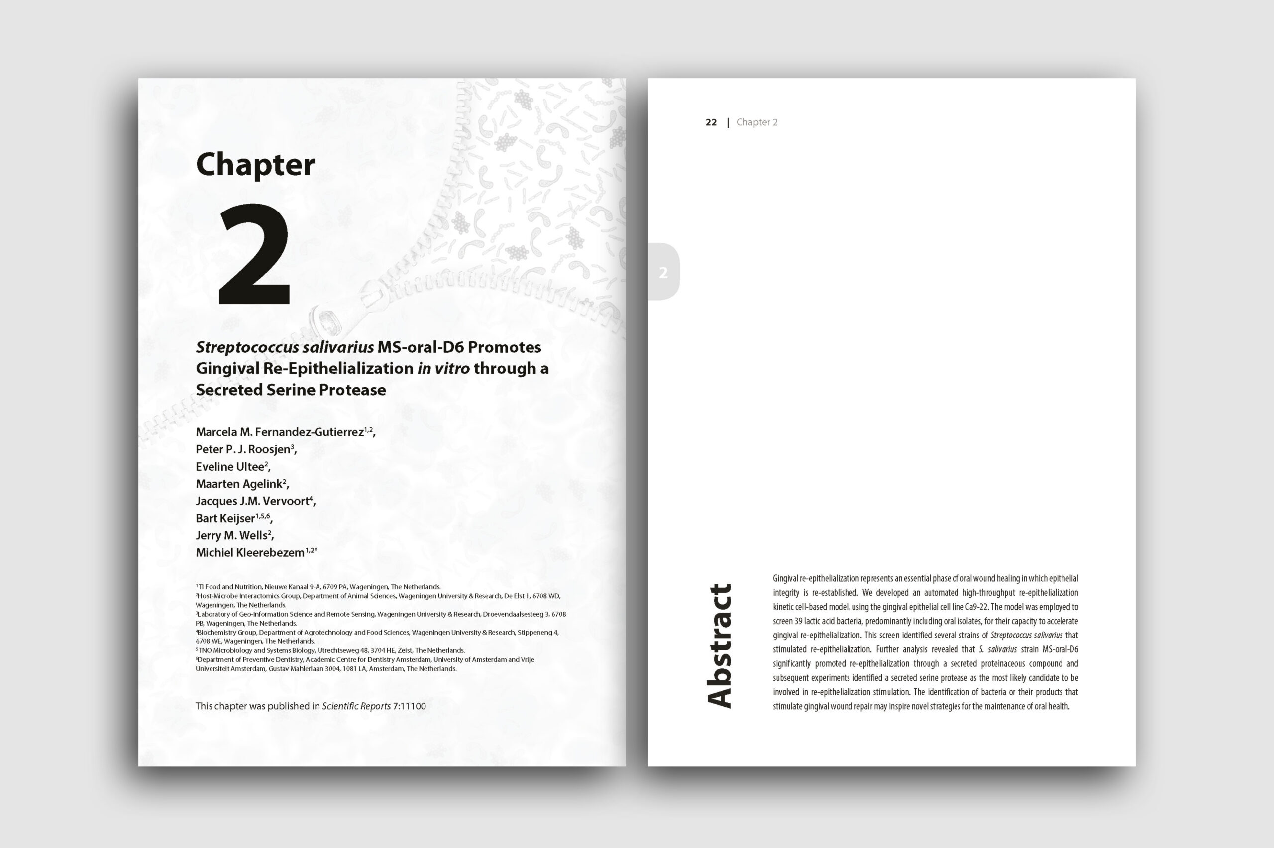 layout26