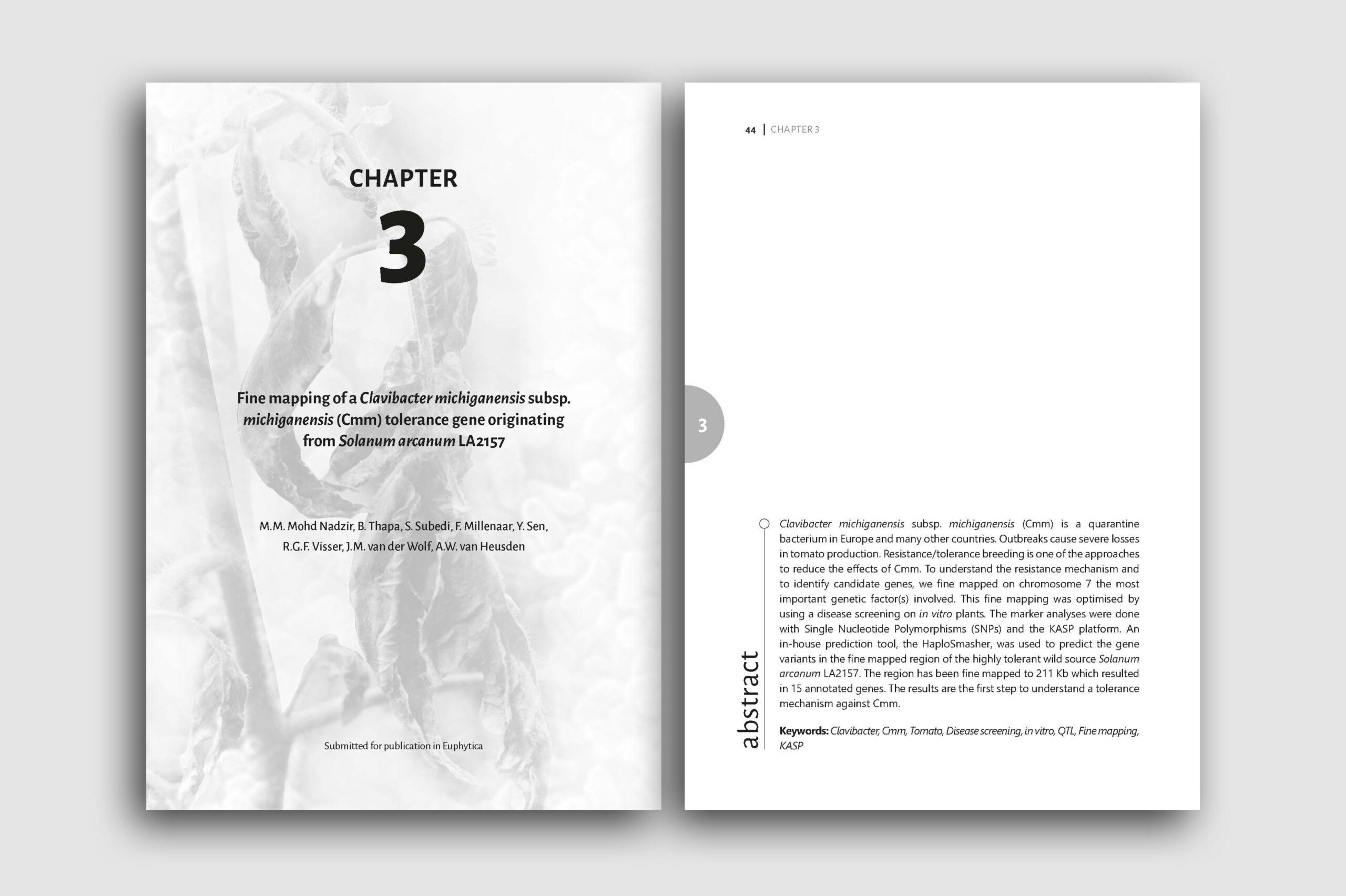 layout27