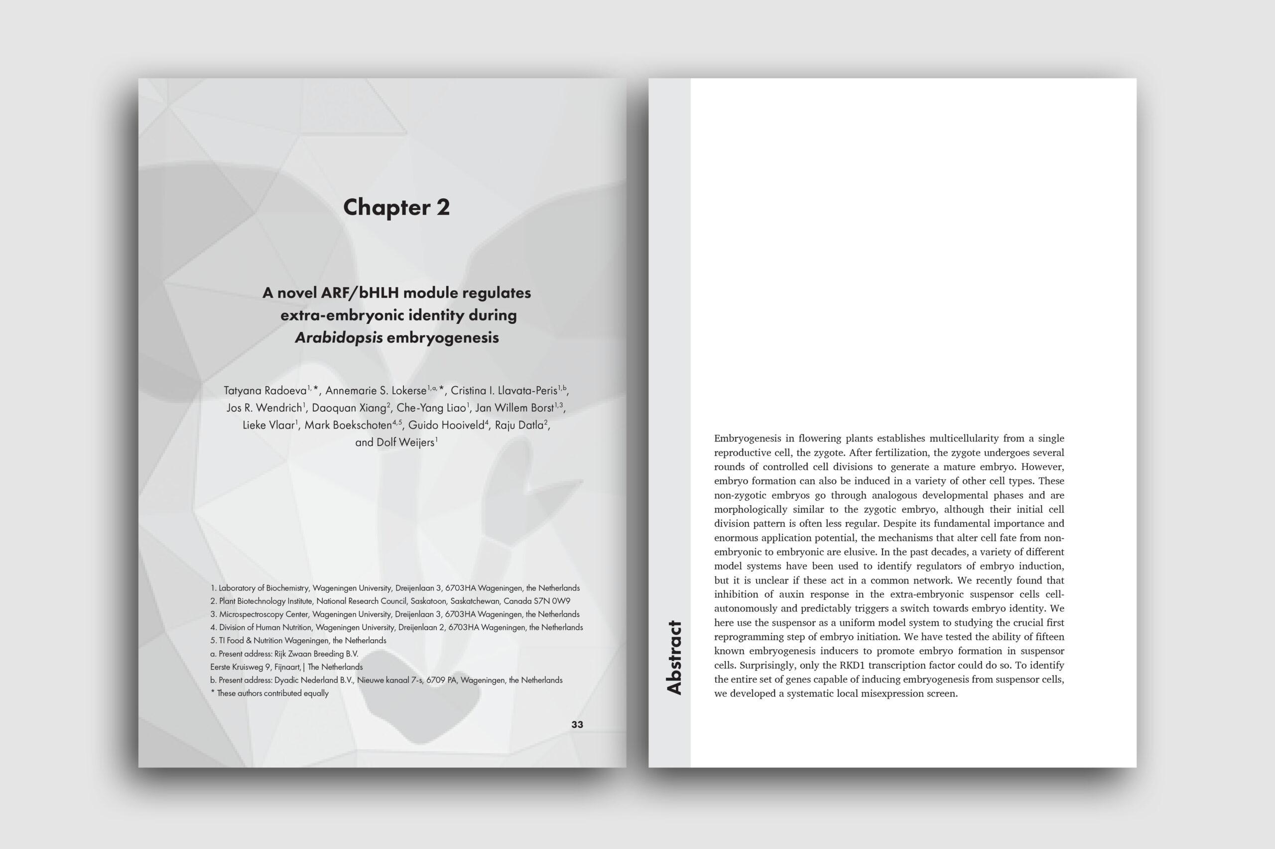layout52