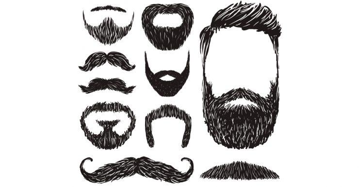 Beard inspiration in illustrations