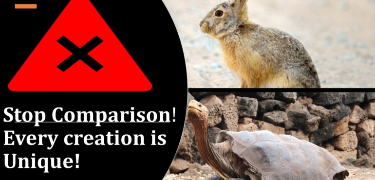 Most misleading story of tortoise and Hare