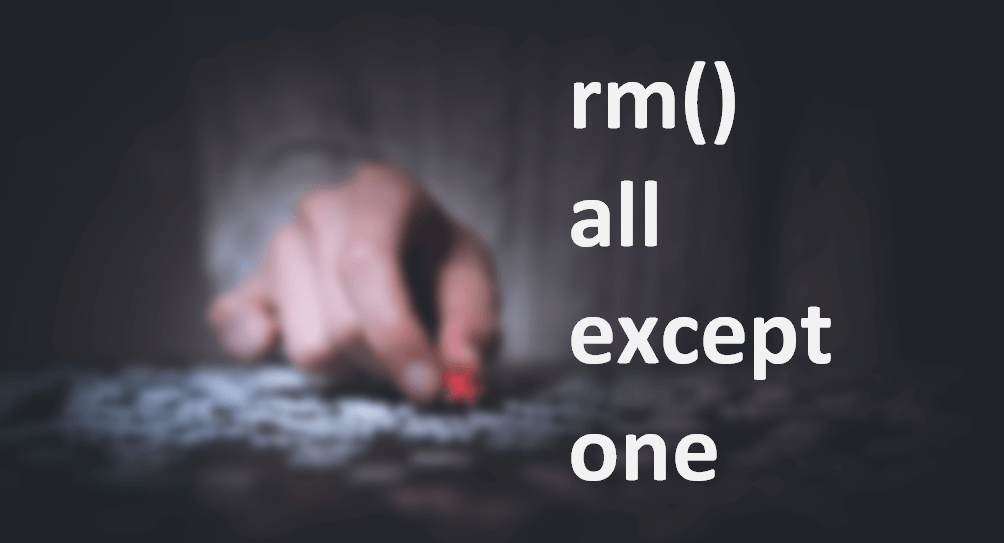 Remove all objects except one or few in R