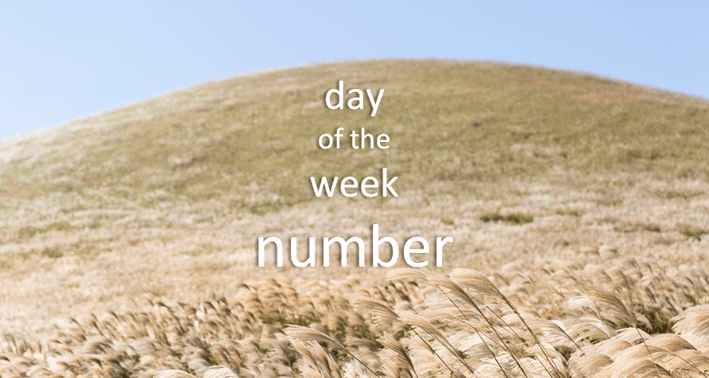 Day of the week number in R