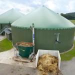 Shaw Renewables Biomass Biogas renewable energy anaerobic digestion