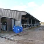 Shaw Renewables Biomass Biogas renewable energy dairy farm