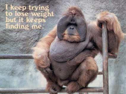 weightproblems