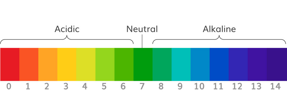 the-ph-scale