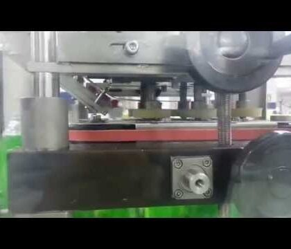 Automatic Cap Feeder and Linear Capping Machine