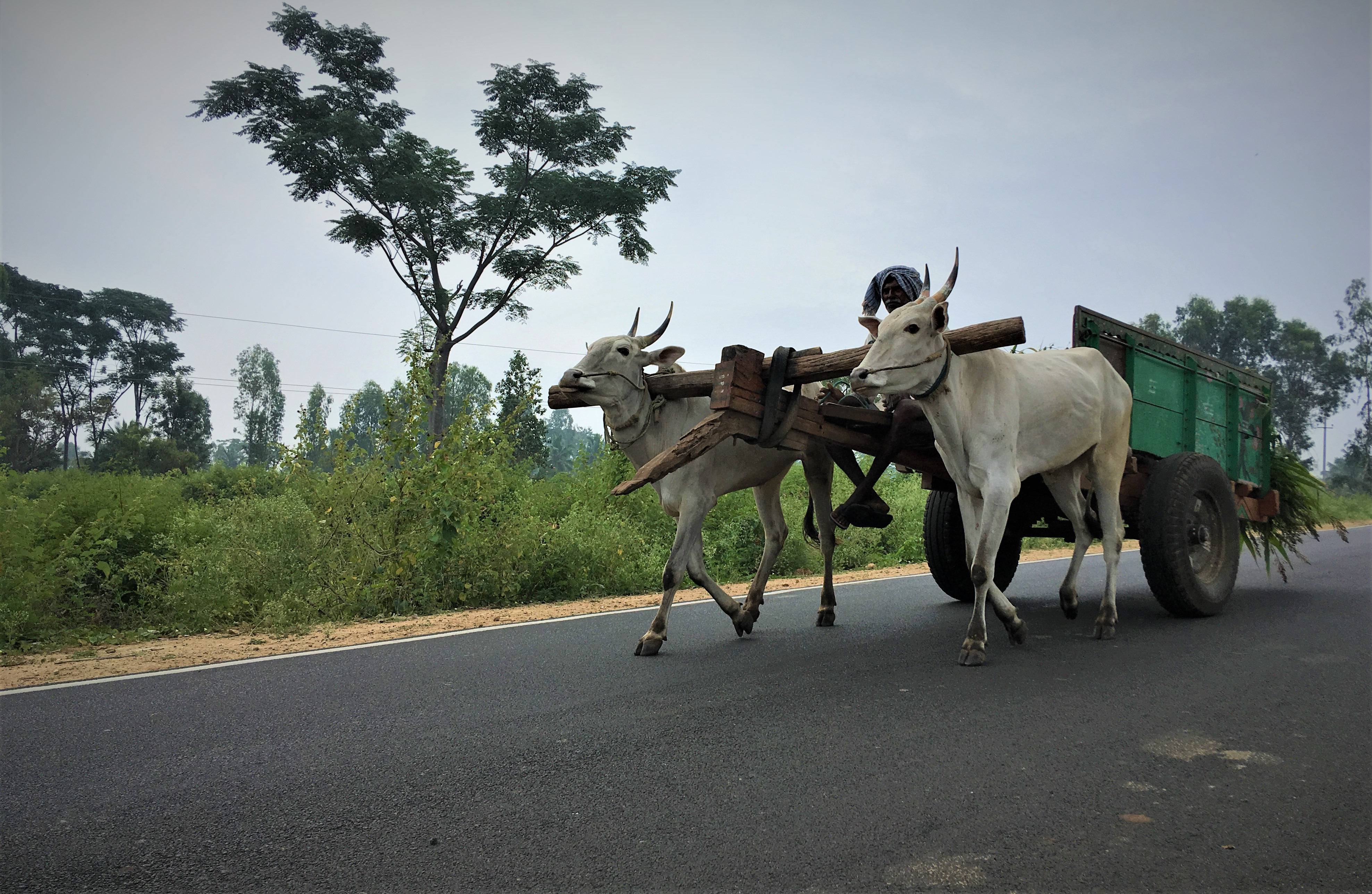 A Short History of Farm Loan Waivers and a Map of Farmers' Pipe Dreams