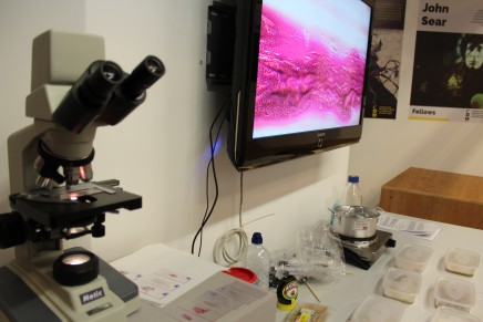 Video – DIYbio / Bioprospecting Birmingham