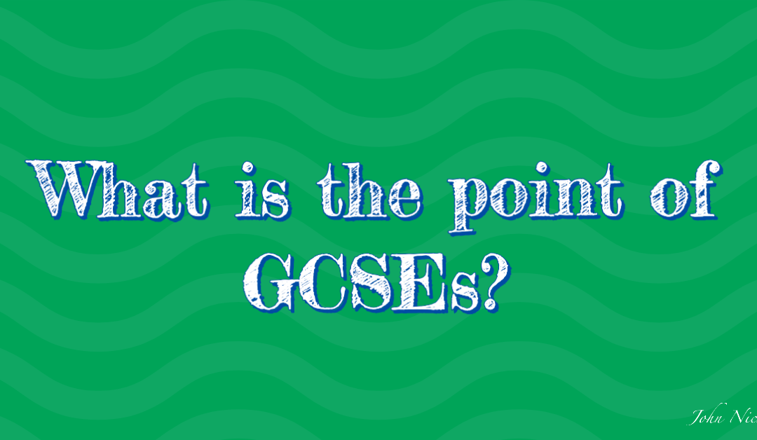 What is the point of GCSEs?
