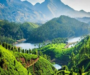 blogs 5 incredible experiences in indias western ghats