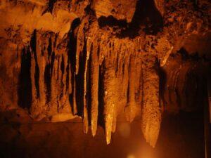stalactites Belum 100121 12001 resize 73