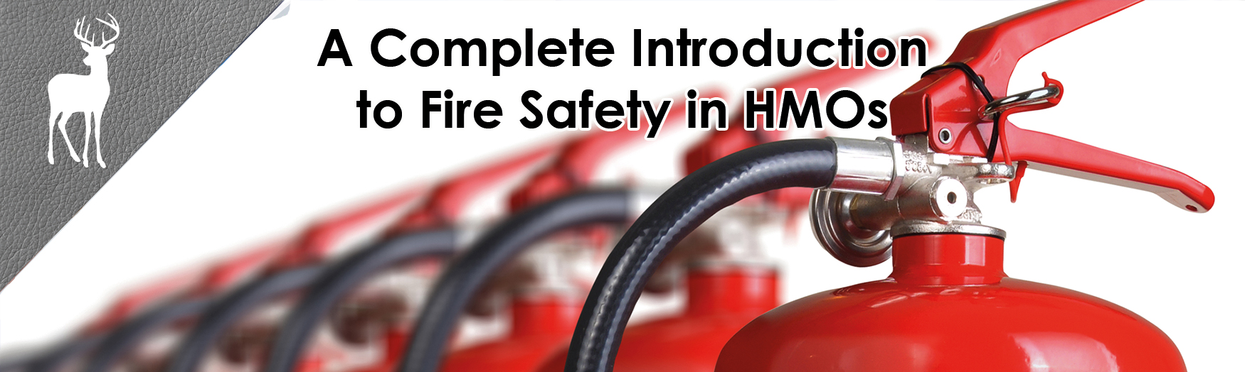 fire safe hmo, fire regulations lettings, fore regulations hmo, fire safety in hmos