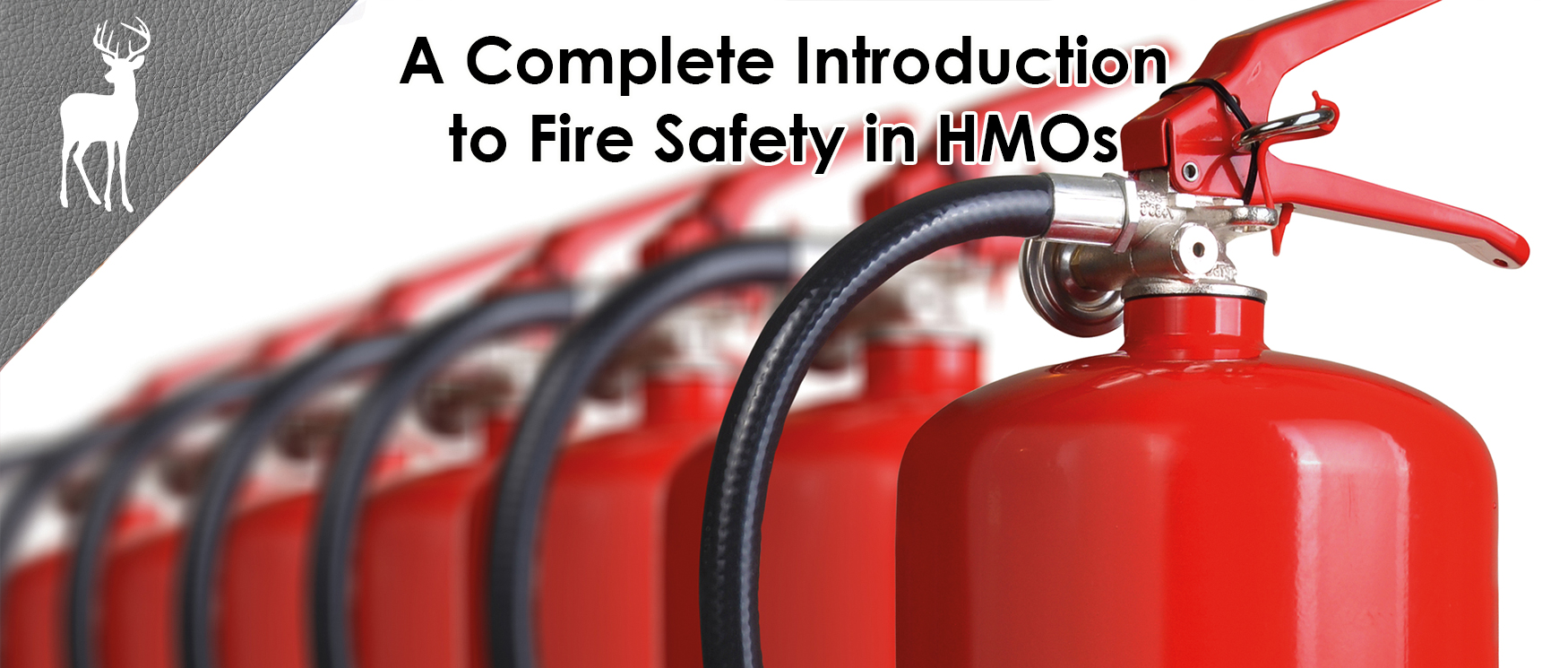 fire safe hmo, fire regulations lettings, fore regulations hmo