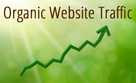 SEO Organic Traffic Providers | Saint John | New Brunswick