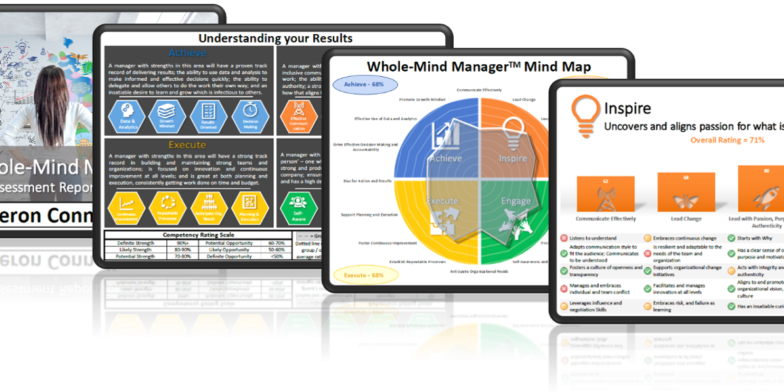 Whole-Mind Manager Report