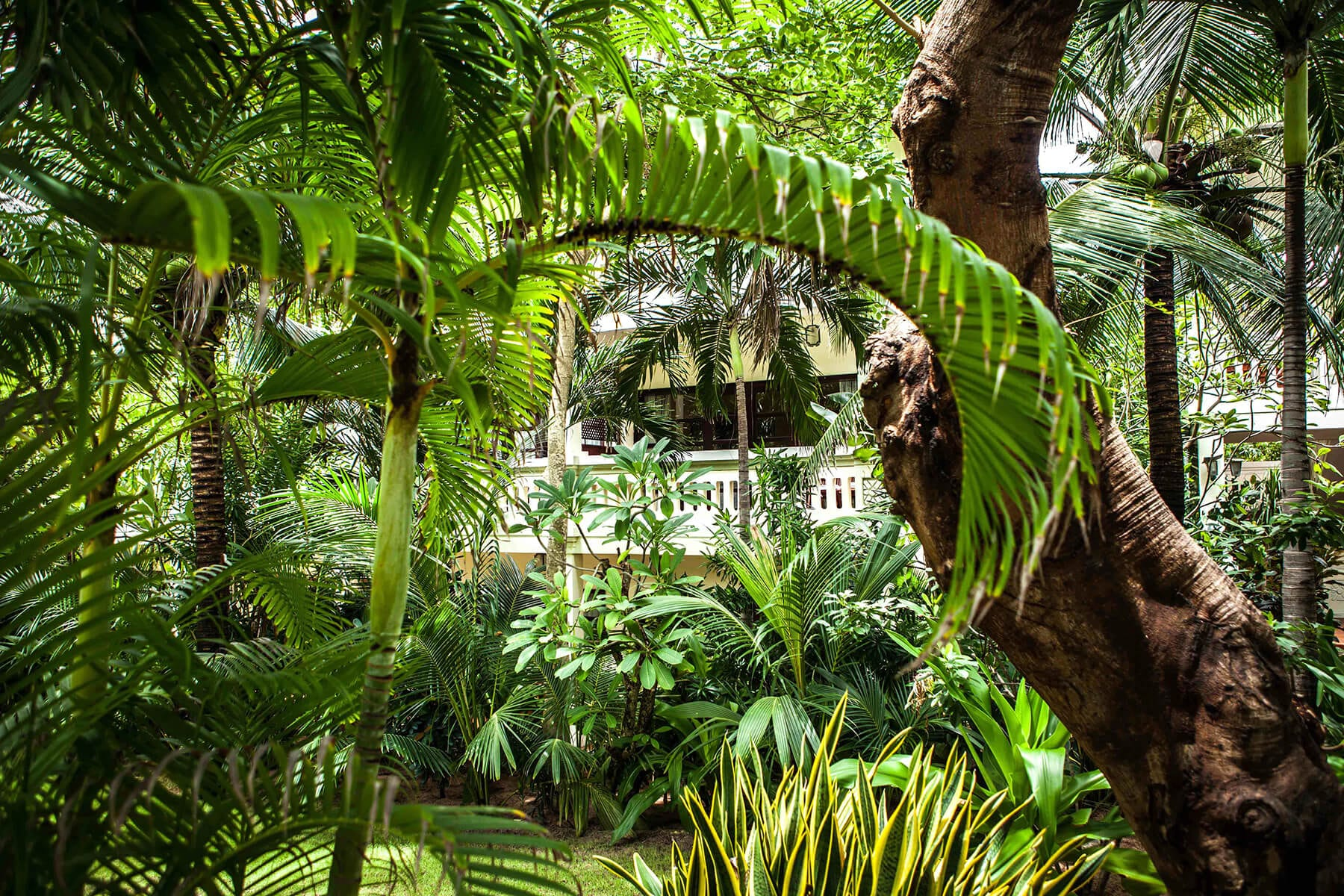 Garden Resort