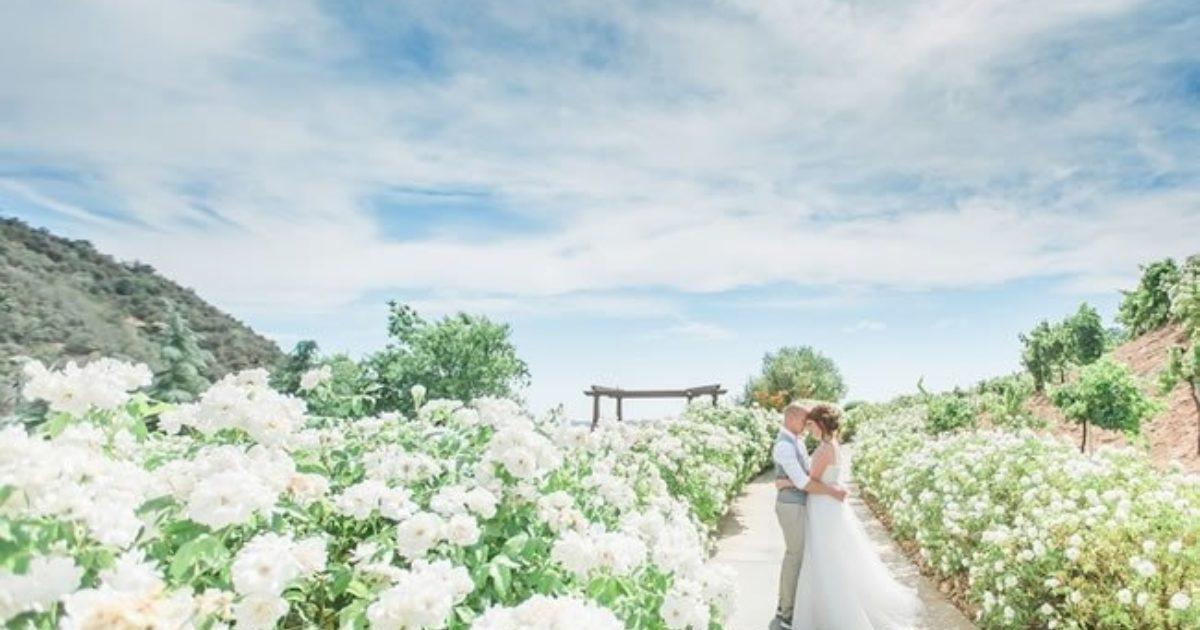 Spring-Wedding-finishing-touches.jpg?time=1627373700