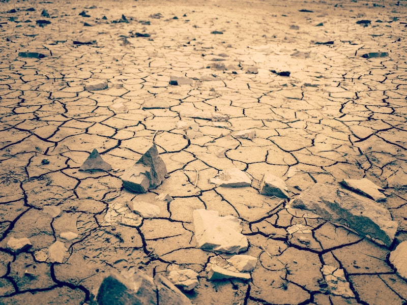 <span style='color:#00000;font-size:36px;'>We're Facing Social Collapse So Why The Optimism?</span><h3> Optimism bias means we believe we can solve the climate crisis, but this is not a problem that can be 'solved.' </h3>