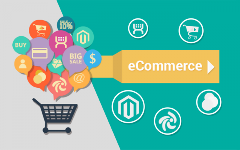 Indian E-Commerce Industry is not yet a Success Story!