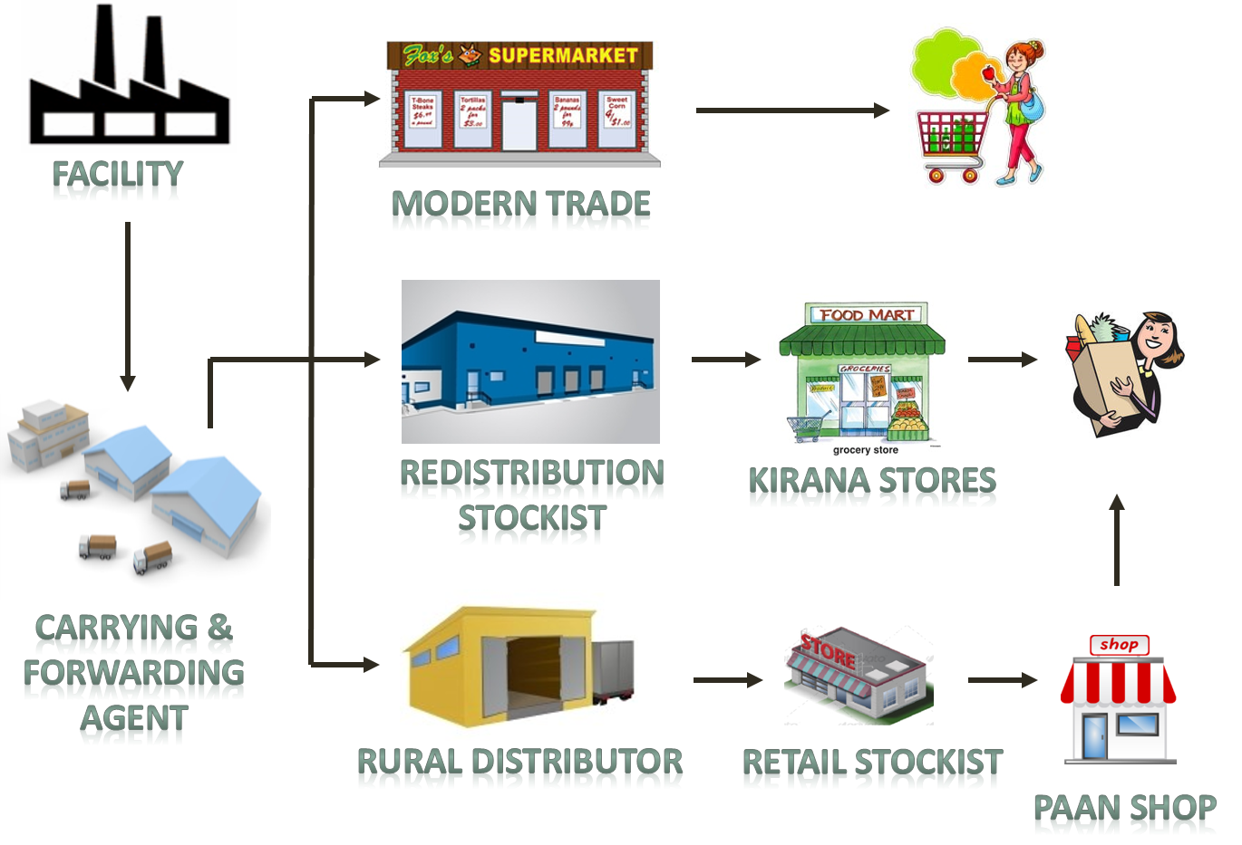 Supply Chain Model in FMCG sector