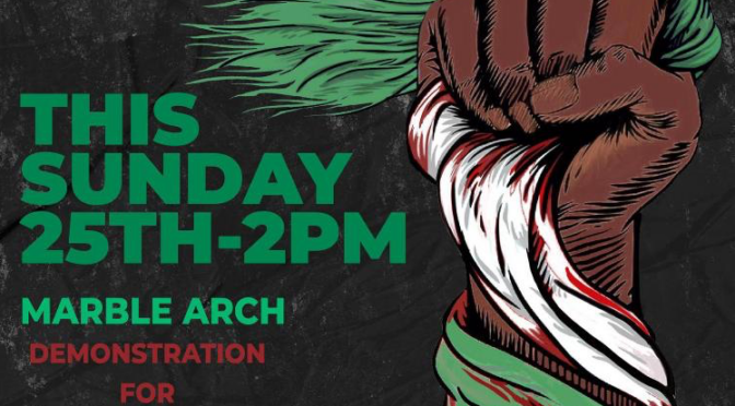 Nigeria End SARS London solidarity protests  – 24th and 25th October 2pm