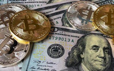 Tech News : Suspected Cannabis Farm Turns Out To Be A Bitcoin Mining Farm