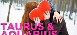 Taurus Aquarius