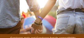 Capricorn Male Capricorn Female love compatibility