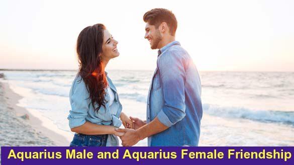 Aquarius Male and Aquarius Female friendship
