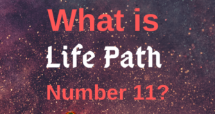 Life path number 11