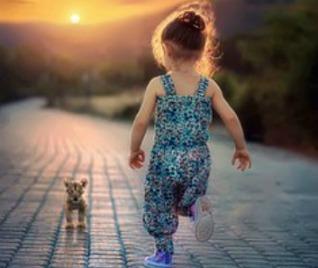 Kind met hondje Pixabay crop 2 -90