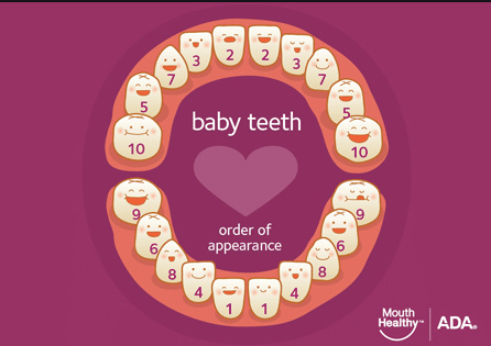 Keep an eye out for baby teeth ​