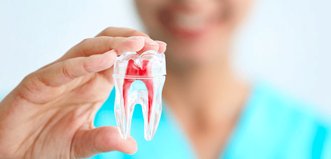 The role of an Endodontist in Root canal treatments