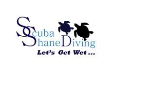 Scuba Diving In Brisbane | Learn To Dive | Scuba Shane Diving
