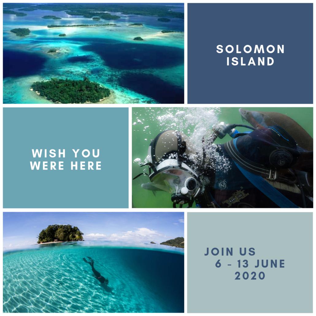 Dive Solomon Island