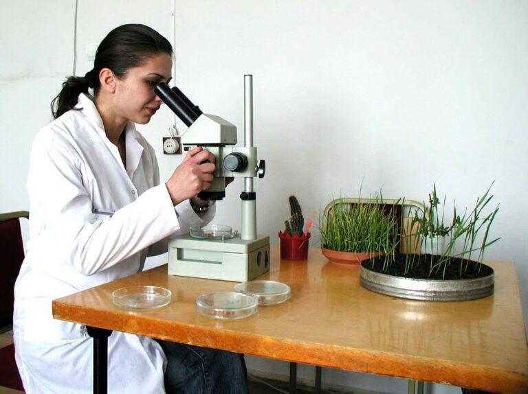 bioinform 1