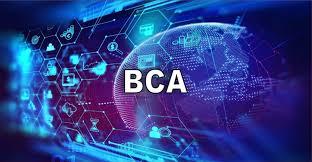 Bachelors of Computer Application (BCA)