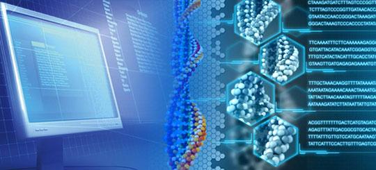 B.Sc.Bioinformatics