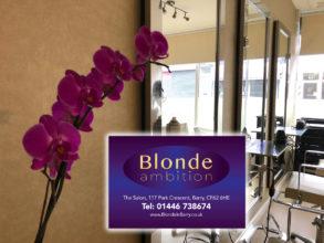 blonde-ambition-293×220