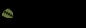 donington-historic-festival-logo