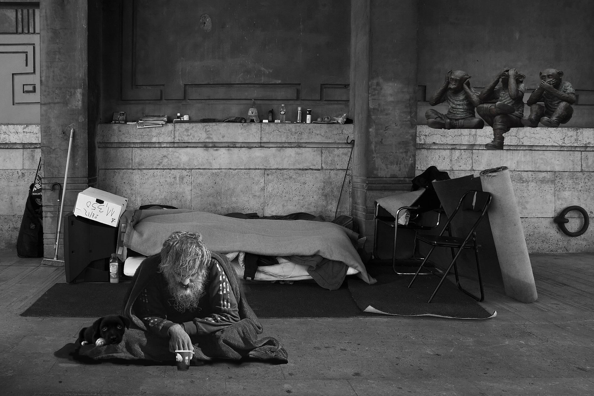 homeless-man-2653445_1920