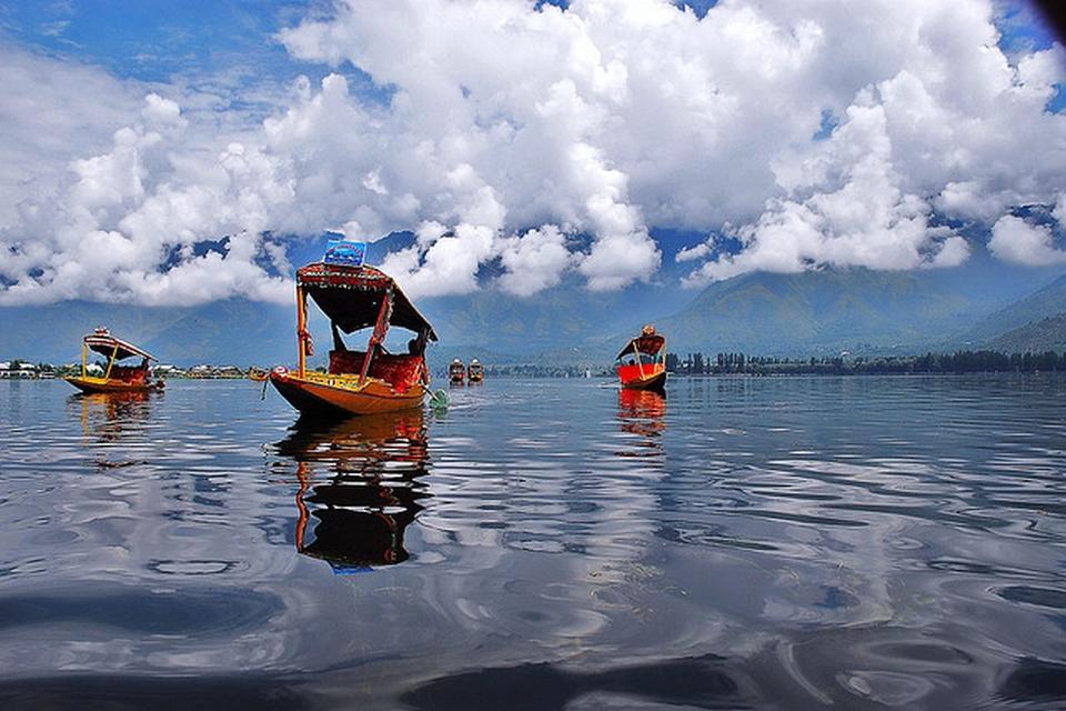 Dal Lake and Shikaras