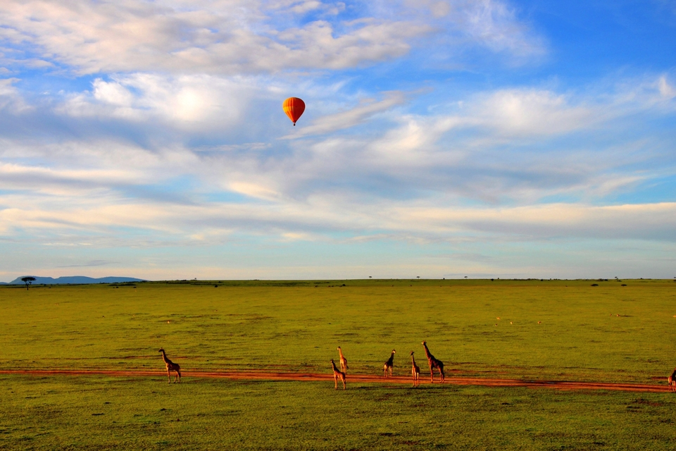 Hot- Air Balloon Safari - Maasai Mara