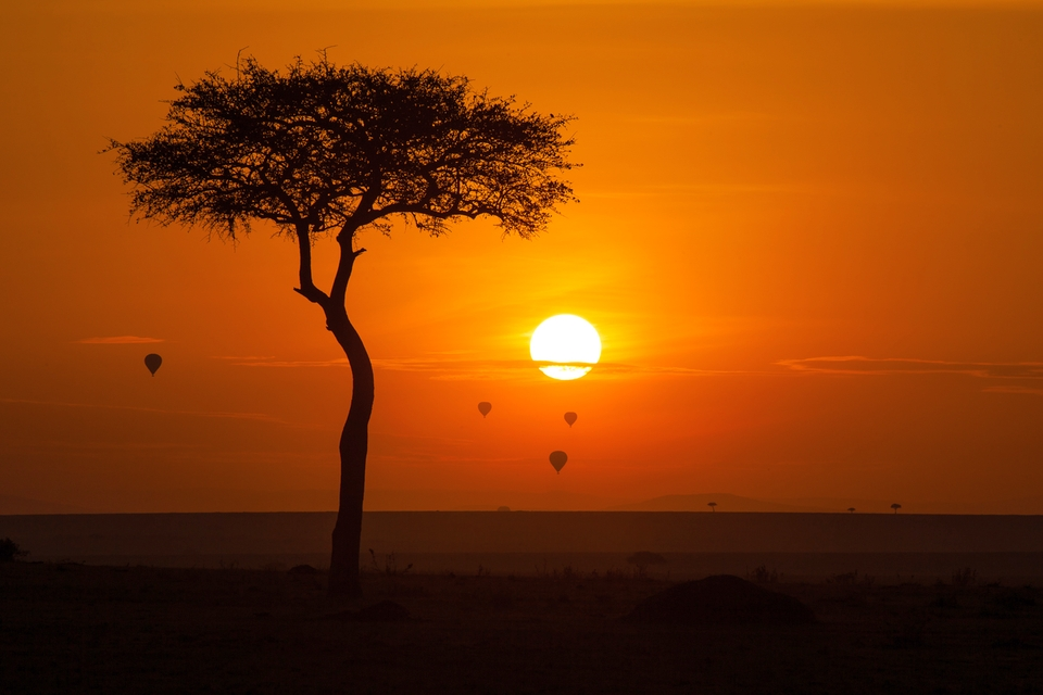 Maasai Mara National Reserve Kenya
